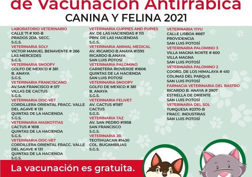 Se suman veterinarias de SLP y SGS a vacunación antirrábica de caninos y felinos 2021